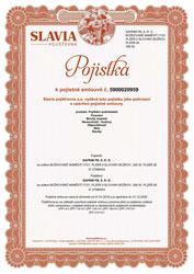 The insurance certificate